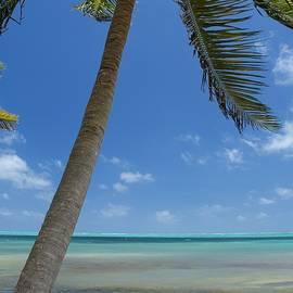 Jason Humbracht - Island Living