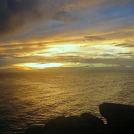 Island Sunset by Kay Novy