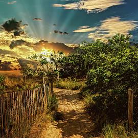Isle Of Gold by Joshua Zaring
