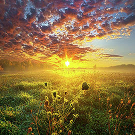 Phil Koch - It Begins With A Word