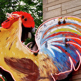 Ithaca New York Neon Rooster Signage by Thomas Woolworth