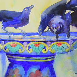 It's Grackle Day at the Bird Bath by Marsha Reeves