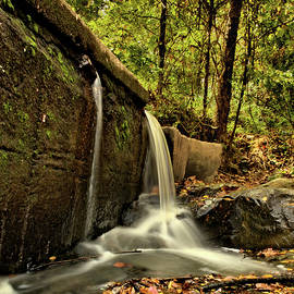 Ivy Creek Trickles by Russell Adams