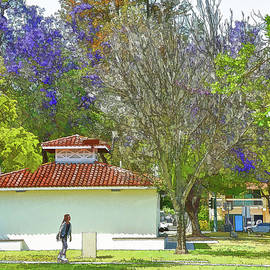 Linda Brody - Jacarandas In The Park Painterly