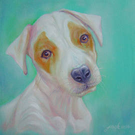 Jack Russell by Jack No War