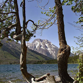 Jackson Lake by William Moore