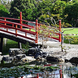 Japanese Garden #4 by Trudee Hunter