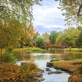 Japanese Garden View by David Coblitz