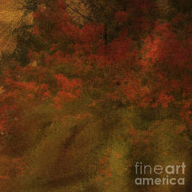 Beverly Guilliams - Japanese Maple Canvas