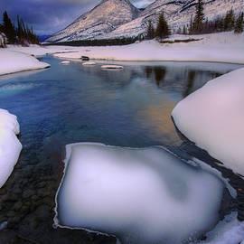 Jasper in the Winter - Dan Jurak