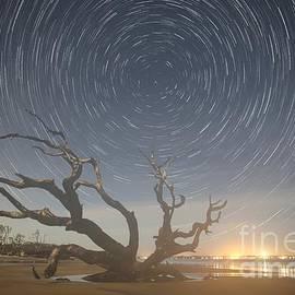 Robert Loe - Jekyll Island Star Trails