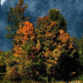 RC deWinter - Jewelled Sky