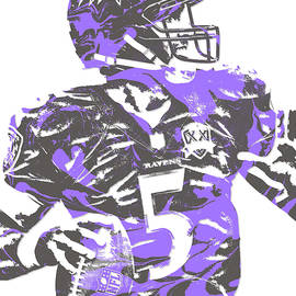 JOE FLACCO BALTIMORE RAVENS PIXEL ART 5 - Joe Hamilton