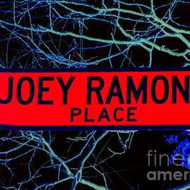 Ed Weidman - Joey Ramone Place