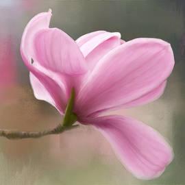 Jordan Blackstone - Join The Dance - Flower Art