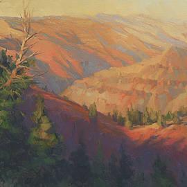 Joseph Canyon by Steve Henderson