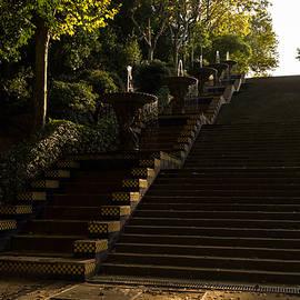 Joyful Sunny Splashes - Wide Steps and Blue and Yellow Cascades - Montjuic Park Barcelona Spain by Georgia Mizuleva