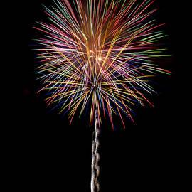Ron Wiltse - July Forth Fireworks