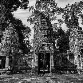 Stephen Stookey - Jungle Temple Entrance
