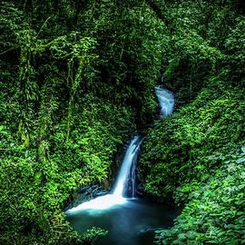 Nicklas Gustafsson - Jungle Waterfall