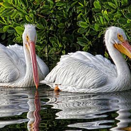 Just The Two Of Us by HH Photography of Florida