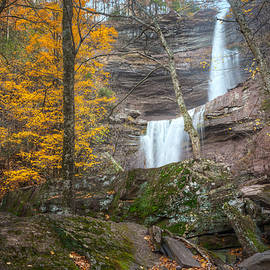Kaaterskill Falls Thru the Forest by Bill Wakeley
