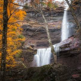 Kaaterskill Falls Thru the Forest Portrait by Bill Wakeley