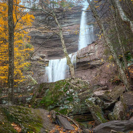 Kaaterskill Falls Thru the Forest Square by Bill Wakeley