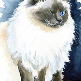 Kadife - Birman Cat Painting by Dora Hathazi Mendes