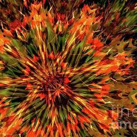 Kaleidoscope 1 by Jean Bernard Roussilhe