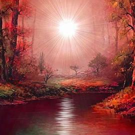 Kaleidoscope Forest