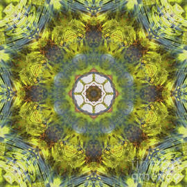 Kaleidoscope O Eighty Five - Paul Gillard