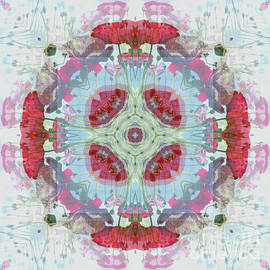 Paul Gillard - Kaleidoscope O Eighty Four