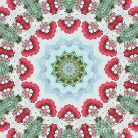 Paul Gillard - Kaleidoscope O Eighty One