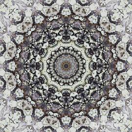 Kaleidoscope O Eighty  - Paul Gillard
