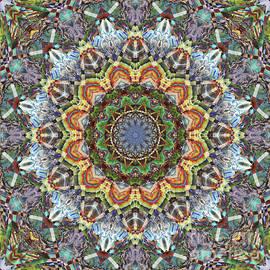 Paul Gillard - Kaleidoscope O Eighty Six