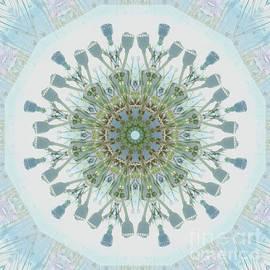 Paul Gillard - Kaleidoscope O Eighty Three