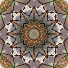 Kaleidoscope O Seventy One - Paul Gillard