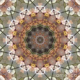 Paul Gillard - Kaleidoscope O Seventy Seven