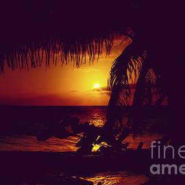 Kamaole Tropical Nights Sunset Gold Purple Palm by Sharon Mau
