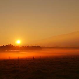 Kamuela Sunrise by Pamela Walton