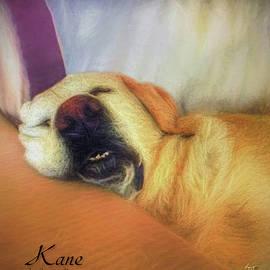 Kane by Sam Davis Johnson