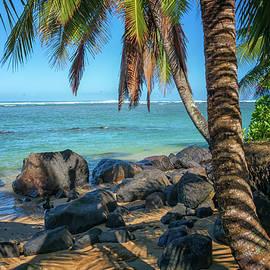 Kauai Beach with Palm Trees Hawaii  by Greg Kluempers