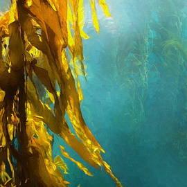 Russ Harris - Kelp Forest