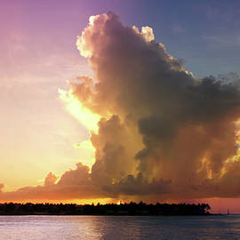 Key West Sunset  by Art Spectrum