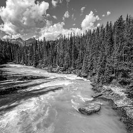 Kicking Horse River British Columbia BW by Joan Carroll