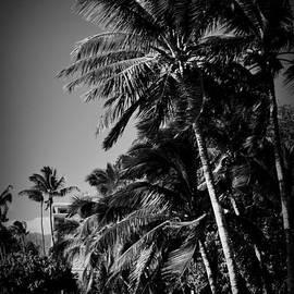 Sharon Mau - Kihei Sugar Beach Maui Hawaii