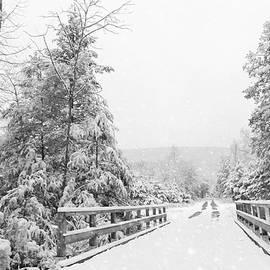 Lori Deiter - Kindness Is Like Snow