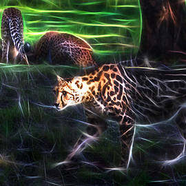 Miroslava Jurcik - King Cheetah And 3 Cubs