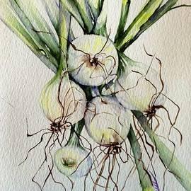 Kitchen herbs 2 by Laurel Adams